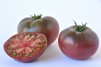 Tomate  couleur france